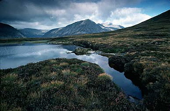 Cairngorms - UK 05